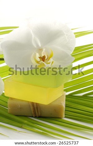 Palm leaf and soap with beautiful orchid - stock photo