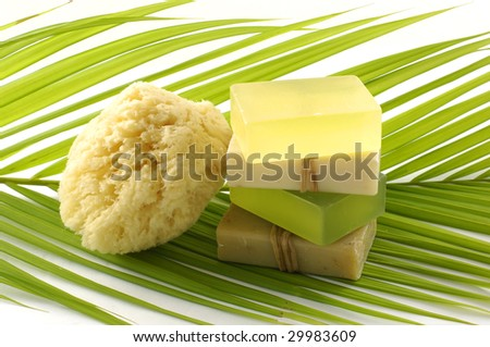 Palm leaf and soap with sponge - stock photo