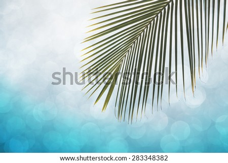 Palm leaf with soft bokeh lights, double exposure effect - stock photo