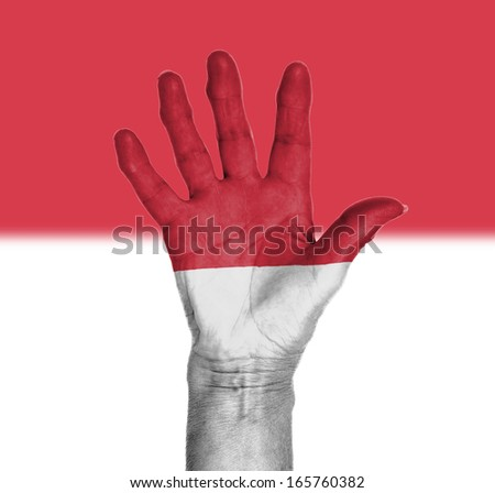 Palm of a woman hand, painted with flag of Mocano