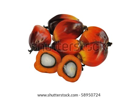 Palm Oil with Cooking Oil isolated on a white background. - stock photo