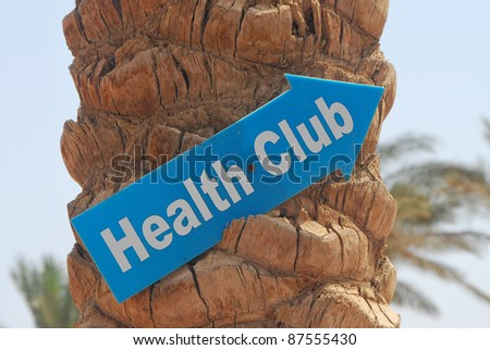 palm on the beach with a shield health club - stock photo