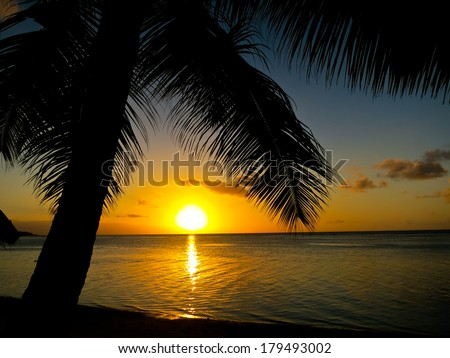 Palm tree and beach in the sunset time, Mauritius - stock photo