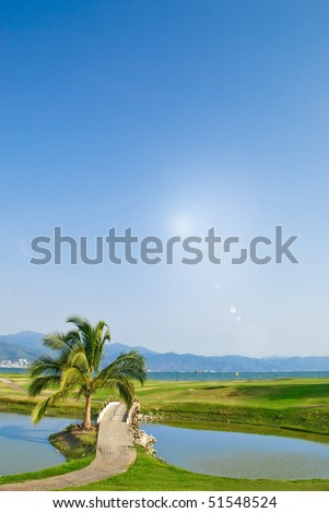 Palm tree and lake on tropical oceanfront golf course with sun - stock photo