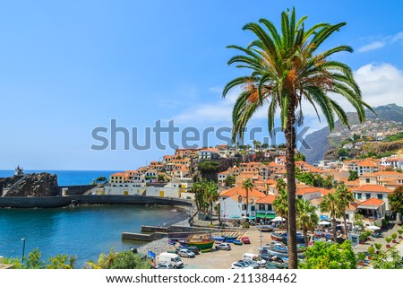 Palm tree and port in fishing village of Camara de Lobos on south coast of Madeira island  - stock photo