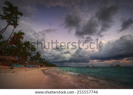 Palm tree beach with dark ominous clouds - stock photo