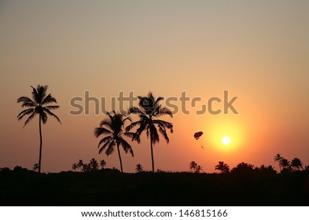Palm tree in sunset, parachute silhouette - stock photo