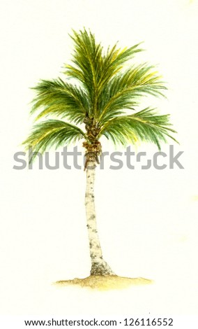 Palm Tree Number 2