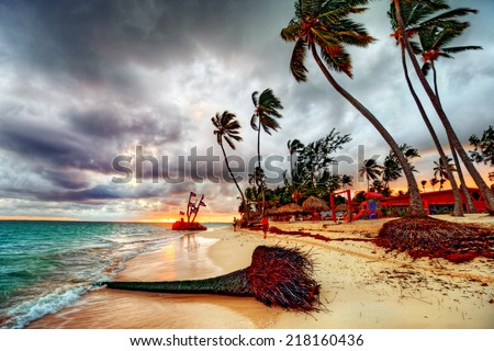 Palm tree sandy beach sunrise with breaking wave and bright sky - stock photo