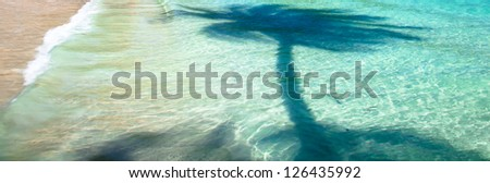 Palm tree shadow on blue sea