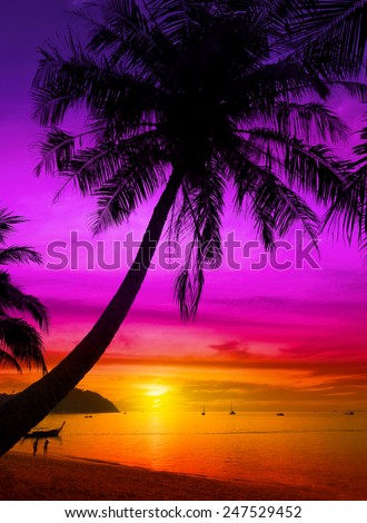 Palm tree silhouette on tropical beach at sunset. - stock photo