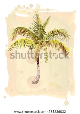 Palm Tree. Watercolor illustration. - stock photo