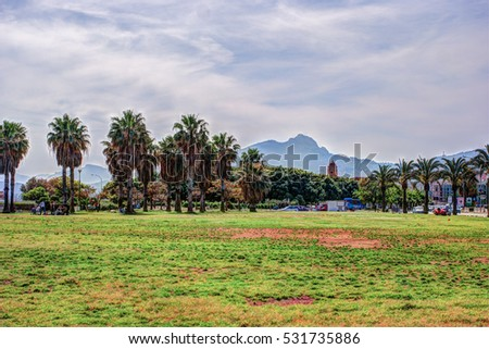Palm trees along the coast in Palermo at beautiful sunny day. Image of tropical vacation and sunny happiness. Filtered vintage photo.