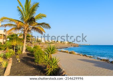 Palm trees and hotel buildings along coastal promenade in Playa Blanca village, Lanzarote, Canary Islands, Spain - stock photo