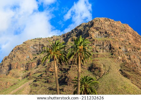 Palm trees and mountain in background in tropical landscape of La Gomera, Canary Islands