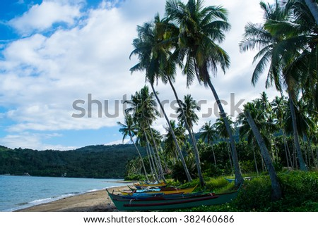 Palm trees and small fishing boats on a beach in the tropics - stock photo