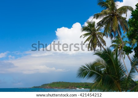 Palm trees and tropical vegetation on the coast, paradise sandy beach and turquoise ocean. - stock photo