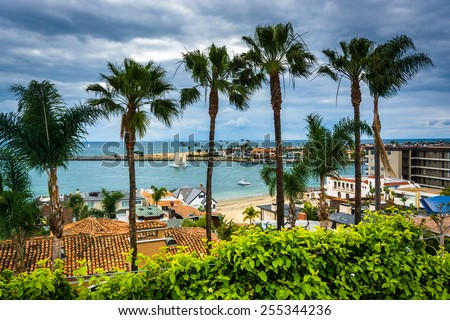 Palm trees and view of the Pacific Ocean in Corona del Mar, California. - stock photo