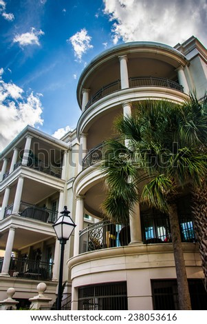 Palm trees and waterfront housing in Charleston, South Carolina.