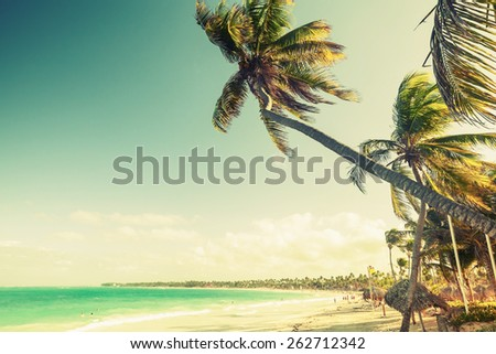 Palm trees grow on a beach. Coast of Atlantic ocean, Dominican republic. Vintage toned effect, old style color correction - stock photo