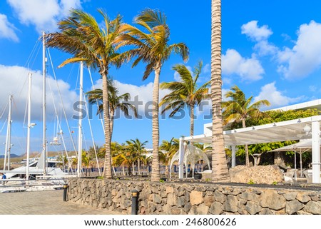 Palm trees in Caribbean style port for yacht boats, Puerto Calero, Lanzarote island, Spain - stock photo