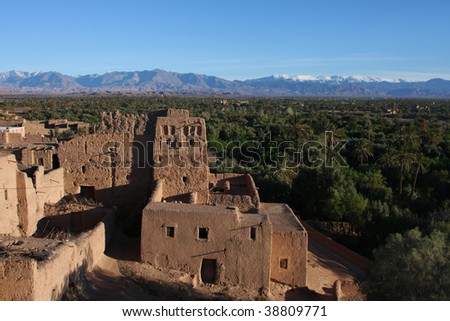 Palm trees in skoura oasis and snow on the Atlas mountains - stock photo