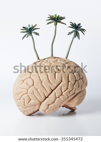palm trees on a human brain model  - stock photo
