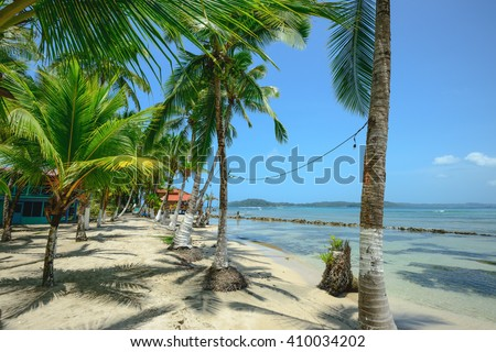 Palm trees on Carenero island in Bocas Del Toro, Panama