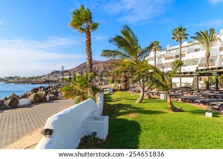 Palm trees on coastal promenade in Playa Blanca holiday village, Lanzarote, Canary Islands, Spain - stock photo