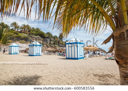 Palm trees on exotic sandy El Duque beach in Costa Adeje town, Tenerife, Canary Islands, Spain