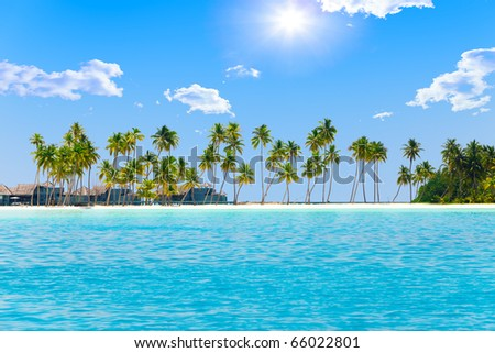 Palm trees on tropical island at ocean. Maldives. - stock photo