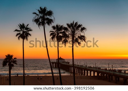 Palm trees over the Los Angeles Beach and Pier on sunset - stock photo