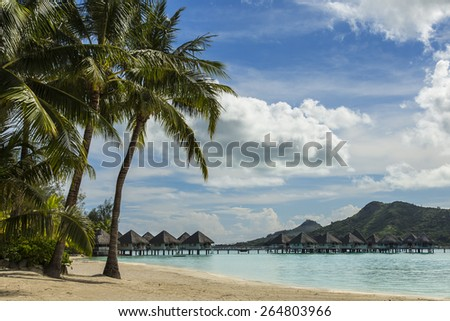 Palm Trees overlooking a beach and bungalows over water - stock photo