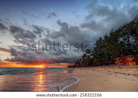 Palm trees sandy beach at sunset under fluffy clouds - stock photo