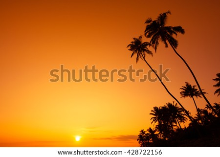 Palm trees silhouette at tropical ocean beach at warm sunset - stock photo