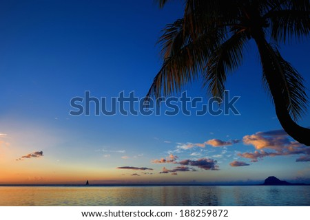 Palm trees silhouette on sunset tropical beach - stock photo