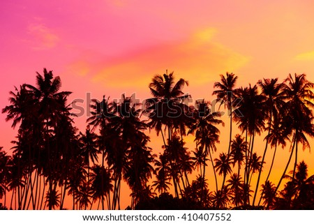 Palm trees silhouettes at twilight - stock photo