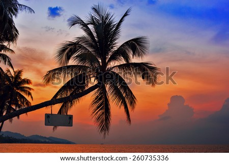 Palm Trees silhouettes on the Colorful Sky Sunset or Sunrise background. A white empty board hanging on the tree with space for inscription - stock photo