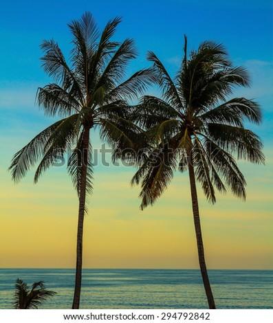 Palm treesl on the beach. Delicate sunset on the popular resort island of Koh Samui - stock photo