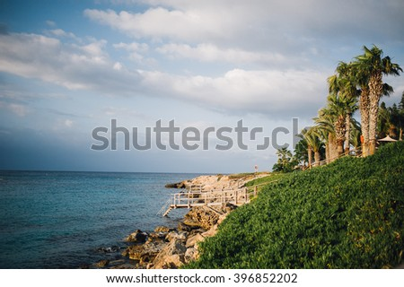 palms and grass crystal clear sea water on coast of Cyprus island near Protaras  - stock photo