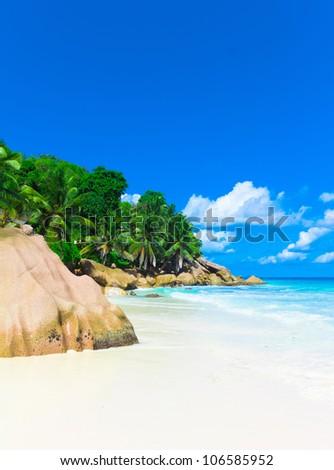 Palms Bay Panorama - stock photo