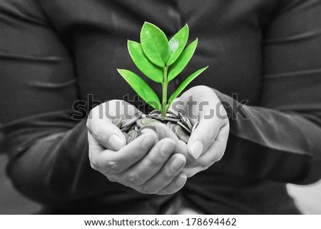 Palms with a tree growing from pile of coins supported by kid's hands /  hands giving a tree growing on coins to child's hands / csr - stock photo