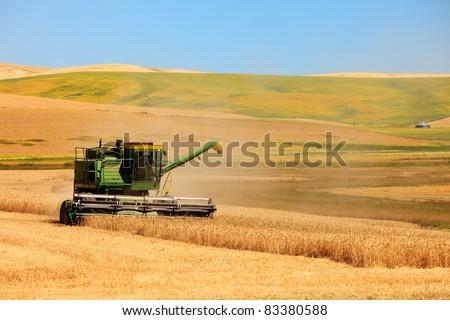 Palouse Harvest Season - stock photo