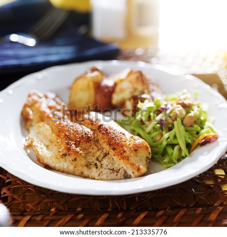 pan fried tilapia with asian slaw and roasted potatoes - stock photo