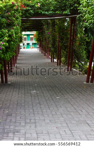 Panama City, Panama- June 08: A green natural tunnel entering the old part of Town, Casco Viejo. June 08 2016, Panama City, Panama.