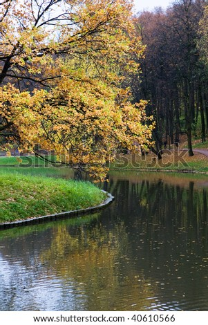 Pand in the autumn forest with yellow trees