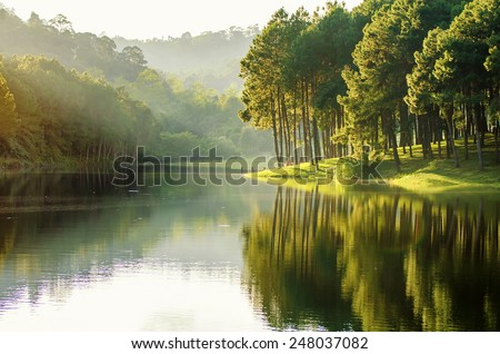 pang ung , reflection of pine tree in a lake , meahongson , Thailand - stock photo