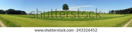 Panorama - stock photo