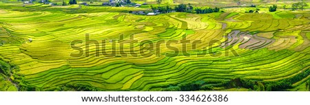 Panorama beauty of terraced fields as roofs interspersed inside the village, far away from the group who are harvesting rice. Rural Scene Vietnam so simple how - stock photo