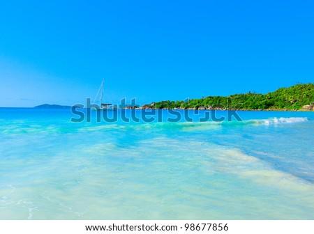 Panorama Jungle Dream - stock photo